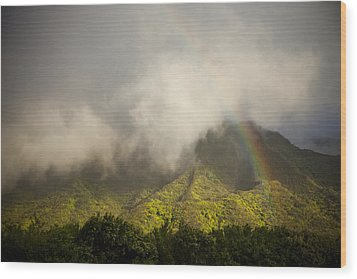 A Rainbow Shines Over The Rugged Wood Print by Taylor S. Kennedy