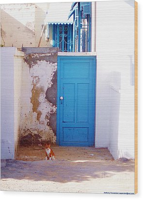 Blue Door Cat Wood Print by Anthony Novembre