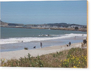 California Beach Wood Print by Carolyn Donnell