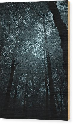 Dark Forest Silhouetted Against Sky Wood Print