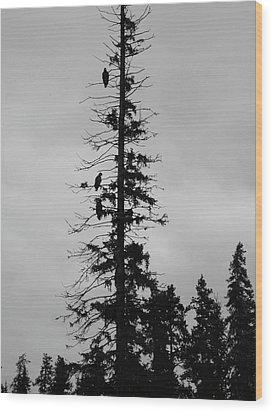 Eagle Silhouette - Bw Wood Print