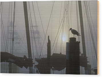 Early Morning At The Boat Docks Wood Print