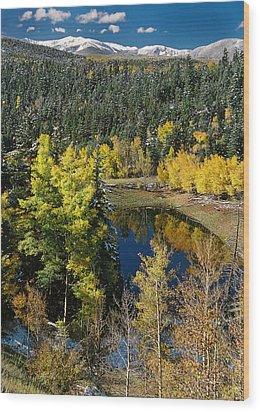Fall Color On Bobcat Pass Wood Print