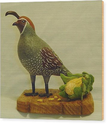Gambel's Quail  Wood Print by Russell Ellingsworth