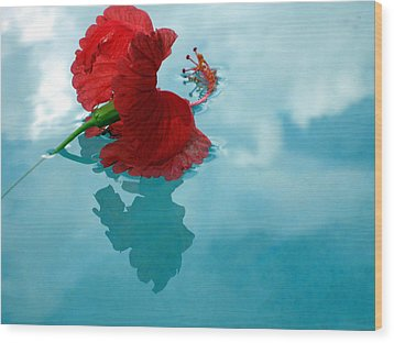 Hibiscus Reflections Wood Print