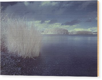 Wood Print featuring the photograph  Infrared At Llyn Brenig by Beverly Cash