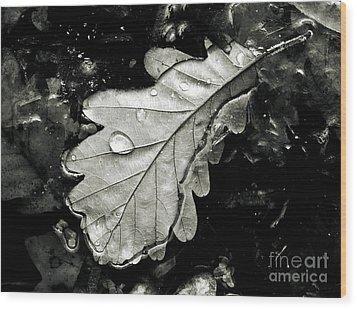 Leaf Wood Print by Odon Czintos