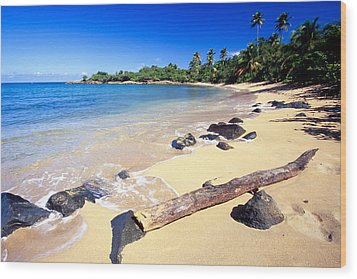 Pinones  Beach Scenic Wood Print by George Oze