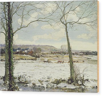 The Frozen Meadow Wood Print by Alexander Jamieson
