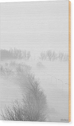 023 Buffalo Ny Weather Fog Series Wood Print by Michael Frank Jr