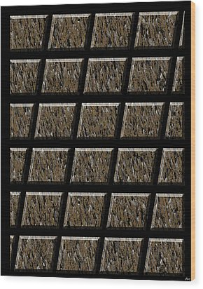 0577 Abstract Thought Wood Print by Chowdary V Arikatla