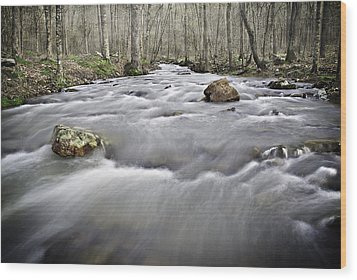 0804-0122 Rolling Creek Of The Ozark Mountains Wood Print by Randy Forrester