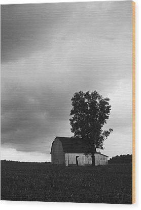 081412-107 Wood Print by Mike Davis