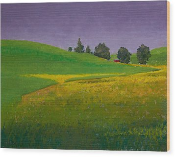 A Sliver Of Canola Wood Print by David Patterson