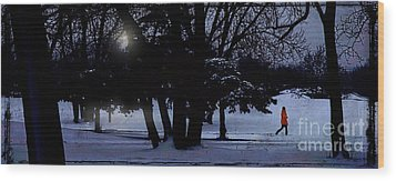 A Walk In The Snow Wood Print by Jim Wright