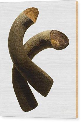 Abstract Steel Wood Print by Tony Cordoza