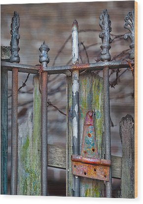 Ageless Wood Print by Brenda Bryant