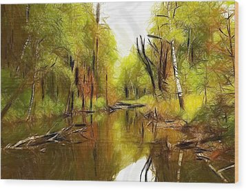 Along The River Wood Print by Steve K