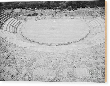 Ancient Site Of Roman Theatre At Salamis Famagusta Turkish Republic Of Northern Cyprus Trnc Wood Print by Joe Fox