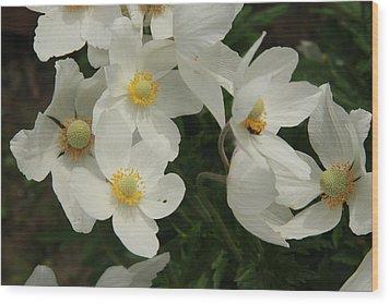 Anemonies Wood Print by Ellery Russell