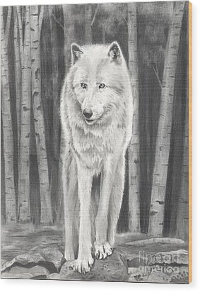 Arctic Wolf Wood Print by Christian Conner