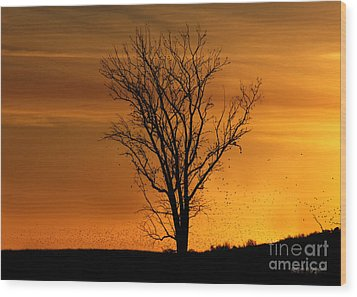Wood Print featuring the digital art At End Of Day II by Rhonda Strickland