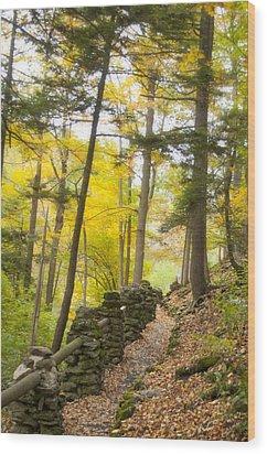 Autumn Hike Wood Print