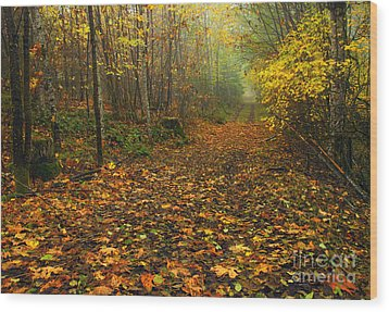 Autumn Lane Wood Print by Mike  Dawson