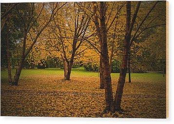 Autumn Wood Print by Micael  Carlsson