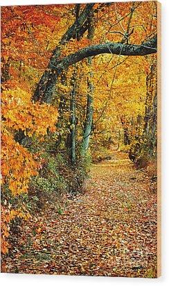 Autumn Pathway Wood Print by Cheryl Davis