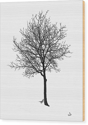 Bare Winter Tree Wood Print