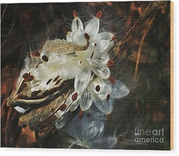 Beautiful Nature 2 Wood Print by Jasna Gopic