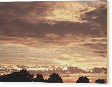 Wood Print featuring the photograph Beautiful Sunset by Ann Murphy