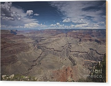 Beautiful Vista Of Grand Canyon Wood Print by Terry Moore