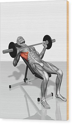 Bench Press Incline (part 2 Of 2) Wood Print by MedicalRF.com