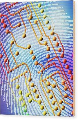 Biometric Fingerprint Scan Wood Print by Pasieka