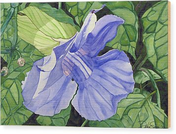 Blue Sky Vine Wood Print