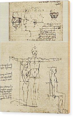 Body Anatomy Wood Print by Sheila Terry