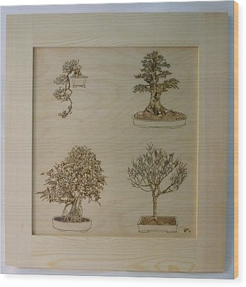 Bonsai Pyrographic Art Original Panel With Frame By Pigatopia Wood Print by Shannon Ivins