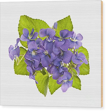 Bouquet Of Violets Wood Print by Elena Elisseeva