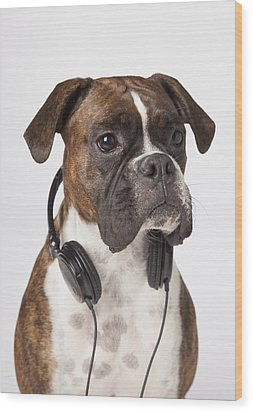 Boxer Dog With Headphones Wood Print by LJM Photo