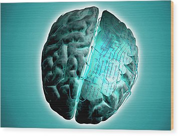 Brain With Circuit Board Wood Print by MedicalRF.com