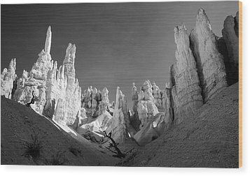 Wood Print featuring the photograph Bryce Canyon Infrared by Mike Irwin