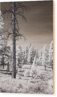 Wood Print featuring the photograph Bryce Canyon Infrared Trees by Mike Irwin