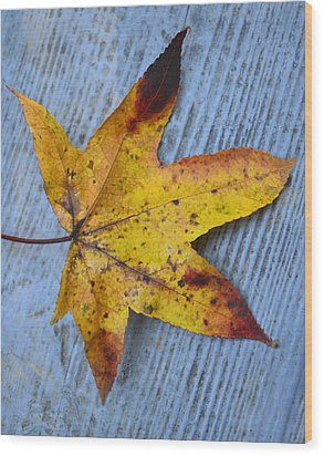 Burnished Gold On Wood Wood Print by Sandi OReilly