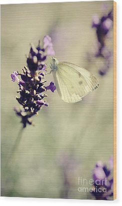 Butterfly.. Wood Print by LHJB Photography