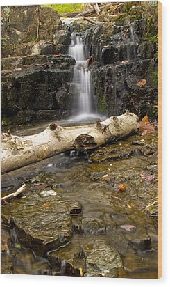 Buttermilk Falls Wood Print by Mike Horvath