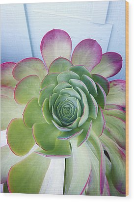 Cactus Wood Print by Patricia Granlund
