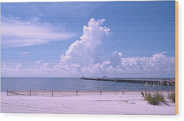 Wood Print featuring the photograph Calming View by Brian Wright