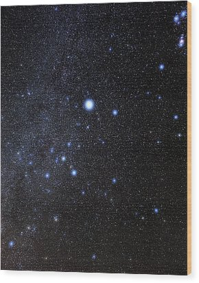 Canis Major Constellation Wood Print by Eckhard Slawik